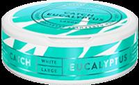 Catch Eucalyptus White