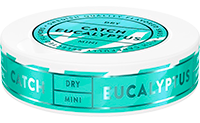 Catch Dry Eucalyptus Mini