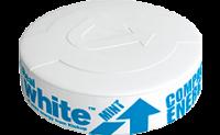 Kickup Real White Soft Mint